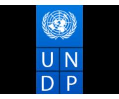 Finance Analyst(UNDP)